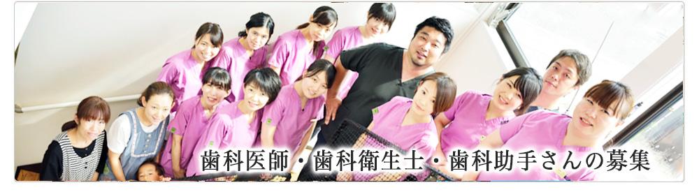 歯科医師 歯科衛生士 歯科助手 求人 募集
